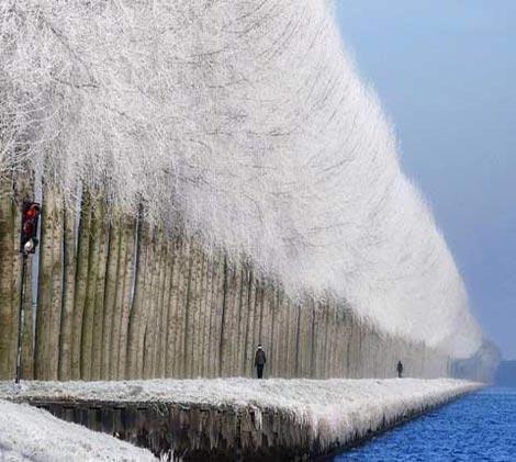 طبیعت برفی